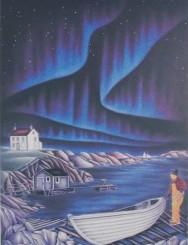 aurores boréales hiver nuit lumières
