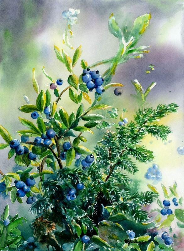 bluets myrtilles peinture baies